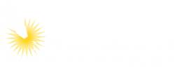 The National Foundation for Cancer Research